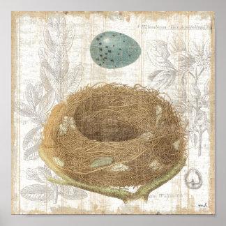 O ninho de um pássaro com um ovo decorativo poster