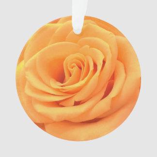 O ornamento floral bonito da foto com laranja