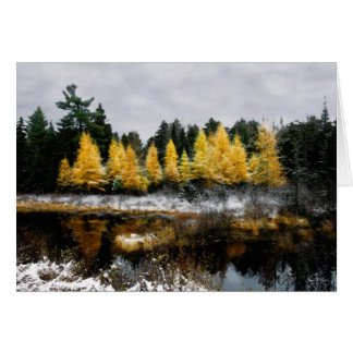 O ouro final do outono: Cartão