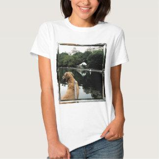 O ouro navega das mulheres de vidro do quadro da tshirt