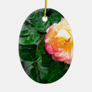 O outono withered cor-de-rosa com pingos de chuva ornamento de cerâmica