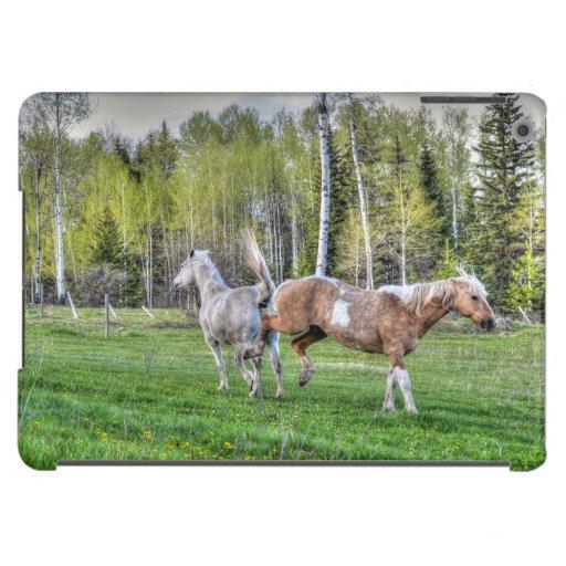 O Palomino Bucking pinta & o cavalo branco, Cavalo