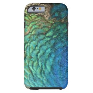 O pavão empluma-se o design abstrato colorido da capa tough para iPhone 6