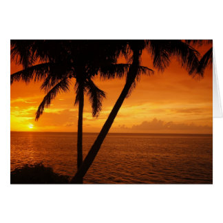 O por do sol da chave de Florida Cartao