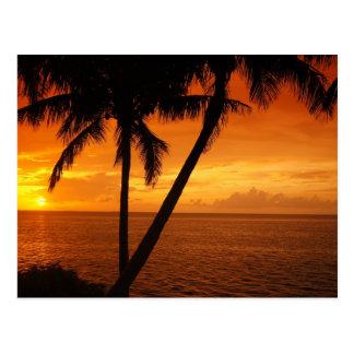 O por do sol da chave de Florida Cartão Postal