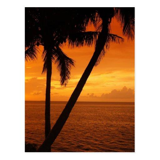 O por do sol da chave de Florida Cartao Postal