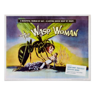 O poster da mulher da vespa