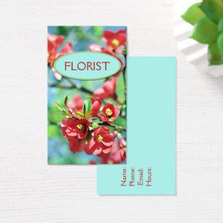 O primavera floral floresce céu azul brilhante das cartão de visitas