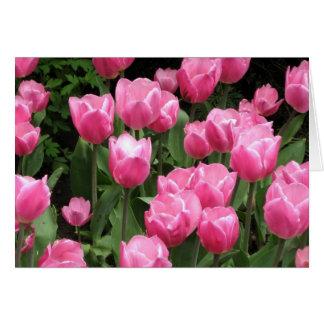 O primavera floresce tulipas cor-de-rosa cartão comemorativo