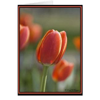 O primavera saltou! cartão comemorativo