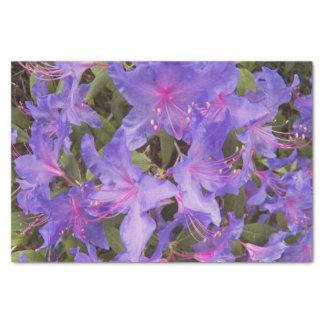 O rododendro roxo floresce floral papel de seda