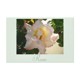 O rosa branco floresce a fotografia 2 da natureza impressão em canvas