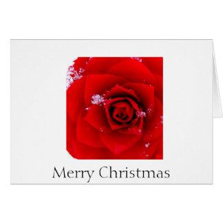 O rosa do notecard do Natal de Sharon Cartao