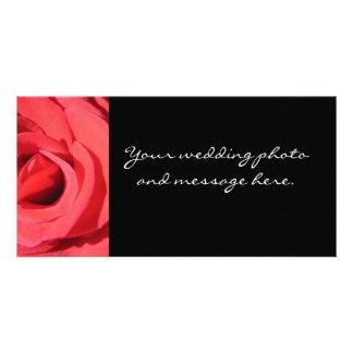 O rosa pela fotografia de Kathryn Trembach Cartoes Com Fotos Personalizados