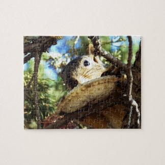 O sanduíche do esquilo - quebra-cabeça