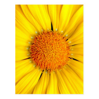 O sol rir… cartão postal