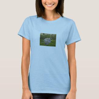 O t-shirt do rancho