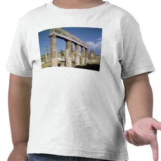 O templo de Apollo Tshirts
