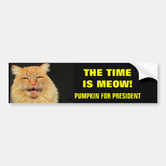 O tempo é Meow! Abóbora para o presidente Adesivo Para Carro