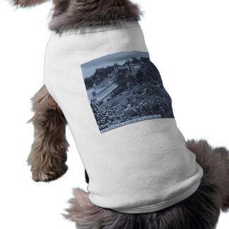 O terraço no vintage 1900 do Central Park NYC Camisa Sem Mangas Para Cachorro