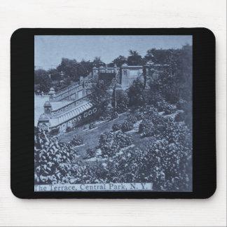 O terraço no vintage 1900 do Central Park NYC Mouse Pads