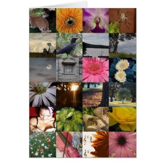 O ~ Windmill~ da colagem da variedade floresce a Cartão Comemorativo