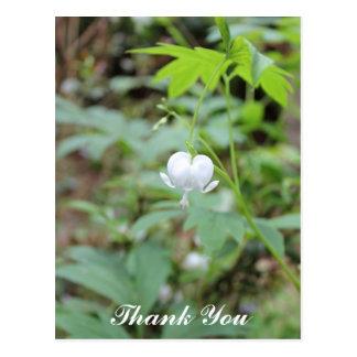 Obrigado branco da foto da flor do coração você ca cartoes postais