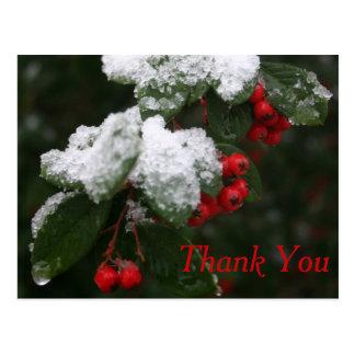 Obrigado cartão: Inverno Cartão Postal