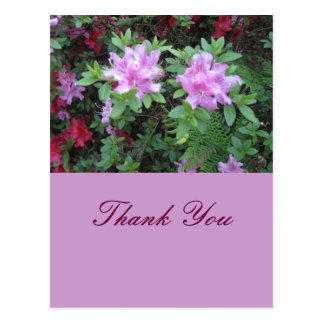 Obrigado Cartão Postal