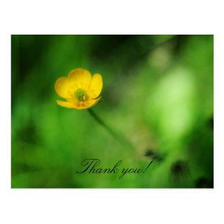 Obrigado! Cartão Postal