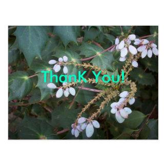 Obrigado da flor branca você cartão postal