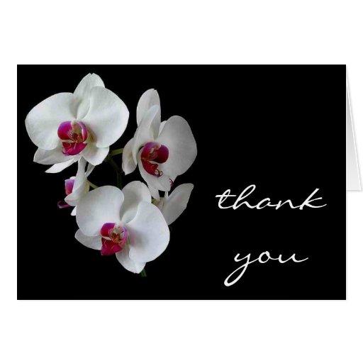 obrigado da orquídea você cartões