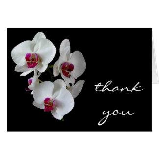 obrigado da orquídea você cartão de nota
