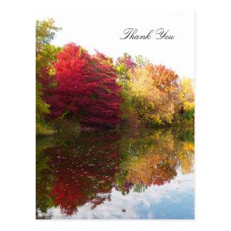 Obrigado da simpatia da beleza do outono você cart cartão postal