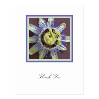 Obrigado da simpatia da flor da paixão você cartão cartão postal