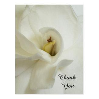 Obrigado da simpatia do Gardenia você cartão Cartão Postal