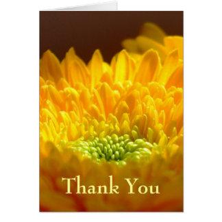 Obrigado da simpatia você cartão