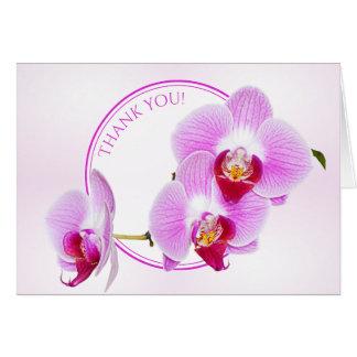"""""""Obrigado"""" fotografia floral da orquídea cortada Cartão De Nota"""