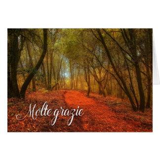 Obrigado italiano de Gratzi você vazio da floresta Cartão Comemorativo