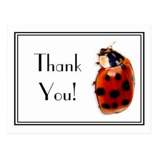 Obrigado o joaninha pequeno bonito e elegante cartão postal