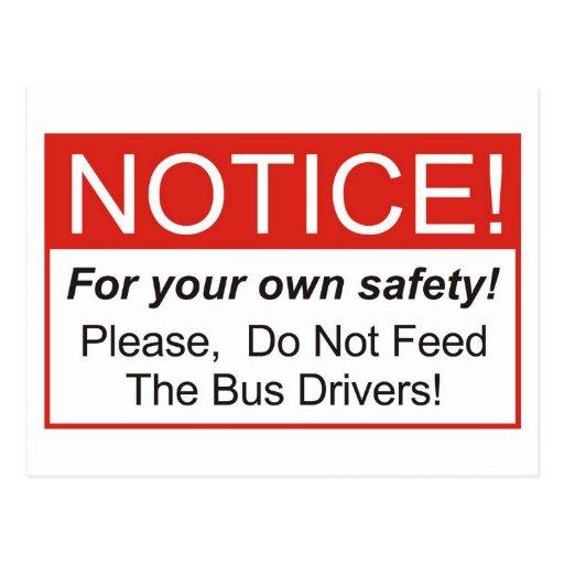Observação/condutor de autocarro cartoes postais