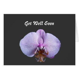 Obtenha o poço logo, cartão da flor da orquídea