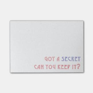 Obteve um segredo: Outta reto Radley Bloquinho De Nota