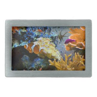 oceano do coral dos peixes do recife