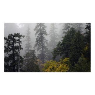 Office suite nevoento da floresta da floresta cartão de visita