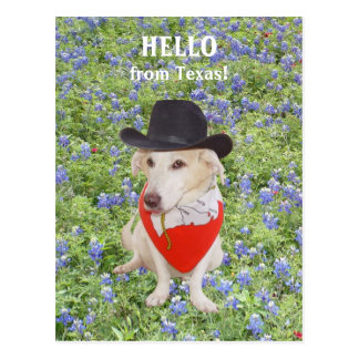 Olá! de Texas! Cartao Postal