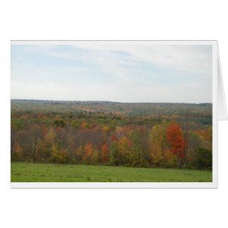Olhar da folha de Nova Inglaterra Cartão