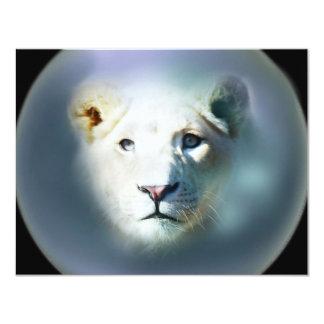 Olhos azuis brancos do leão de África Convite 10.79 X 13.97cm