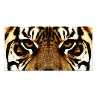 Olhos de um tigre cartão com foto