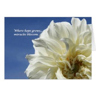 Onde a esperança cresce cartão